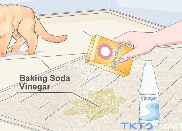 Tẩy vết bẩn nặng trên thảm len bằng dấm và baking soda