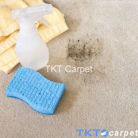 xử lý tẩy điểm vết bẩn trên thảm