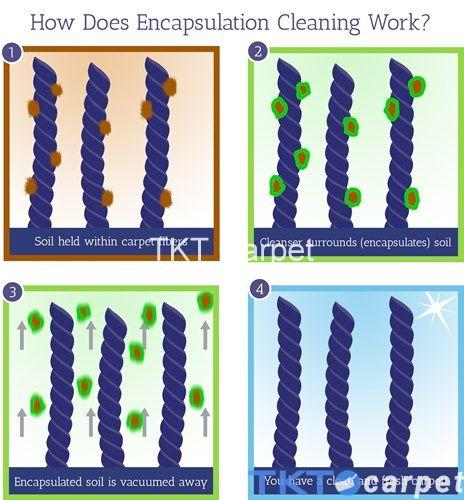 Phương pháp giặt thảm sử dụng bột bao sợi thảm