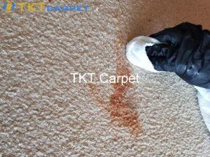 lau sạch và loại bỏ bất kỳ lượng chất lỏng nào còn dư thừa trên thảm